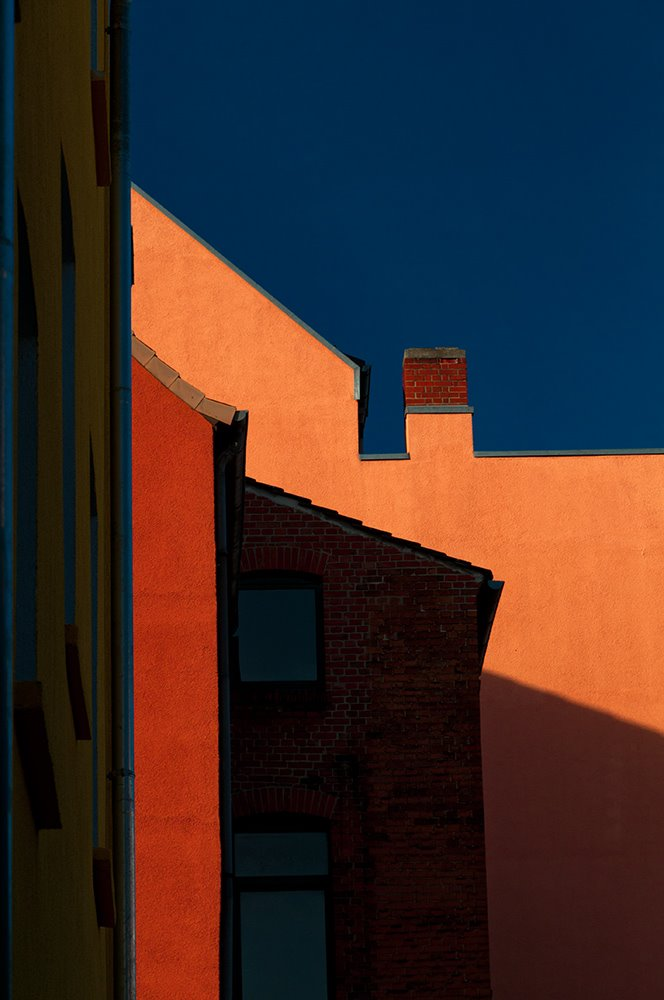 Linden Abstracts